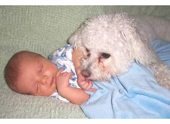 Newborn Full Speed is carefully watched over